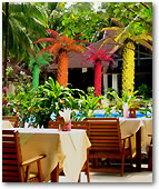 Lighted Classic Palm Trees decorate outdoor dining areas