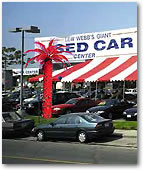 Lighted Palm Trees for Car Lots