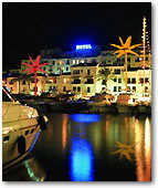 Coconut Palm Trees lighting up a Marina