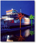 Coconut Lighted Palm Trees at a Hooters on the Water